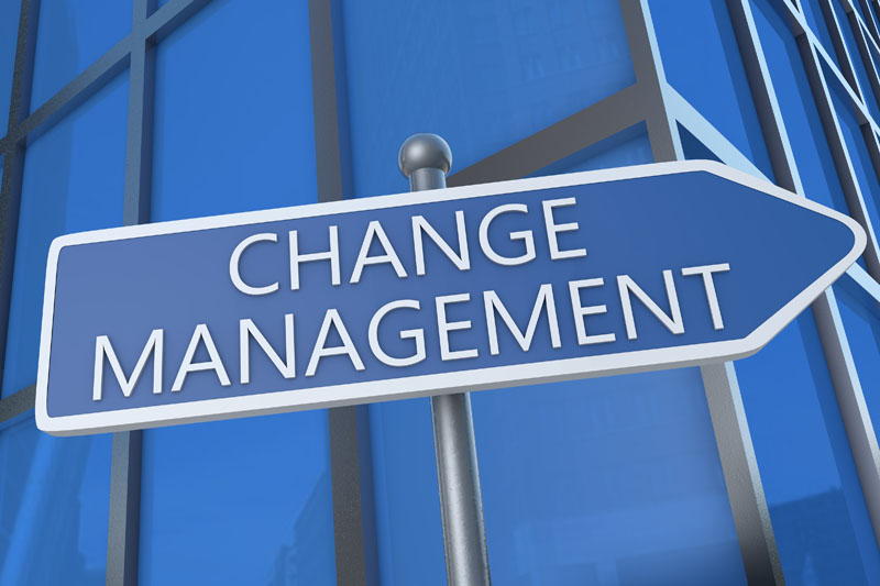 Our Services Business Consulting Change Management